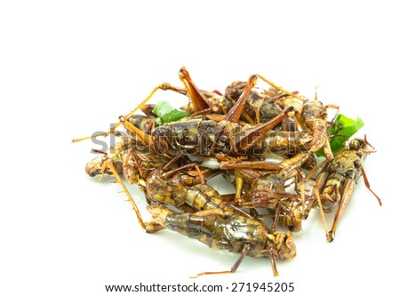 Fried insects, amazing food in Thailand - stock photo