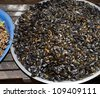 fried insects with garlic and chillie cambodia asia food travel - stock photo