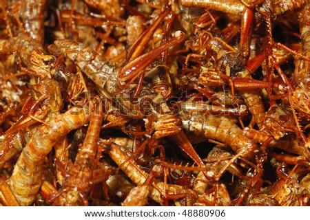 Fried Locusts in a Bangkok market - stock photo
