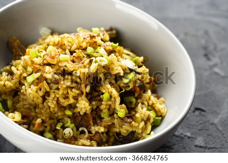 Fried rice with beef - stock photo