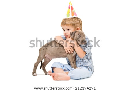 Friendly embrace the boy and pitbull puppy - stock photo
