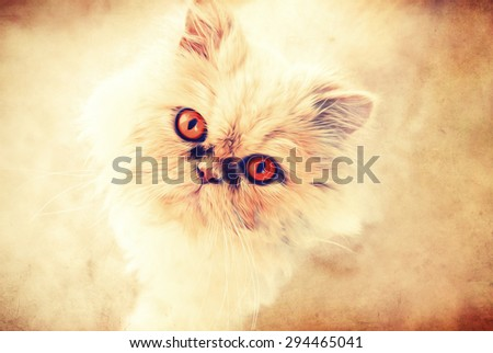 Friendly Glance of Persian Cat, Illustration