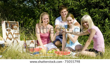 friends at a picnic