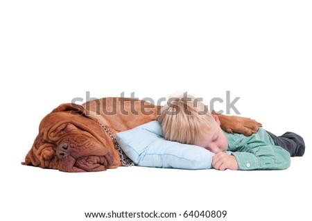 Friends. Big dog hugging boy while sleeping isolated on white - stock photo