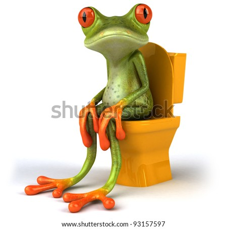Frog and toilets - stock photo