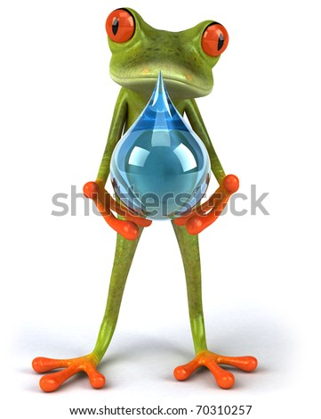 Frog and water - stock photo