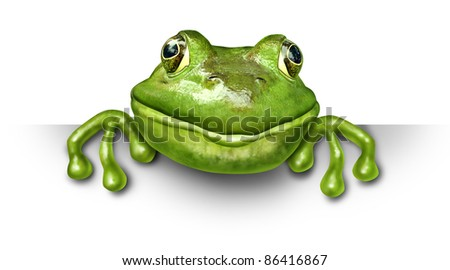 Frog holding a blank sign front view represented by a green happy smiling amphibian holding a white background card for an advertising promotion presenting an important announcement.