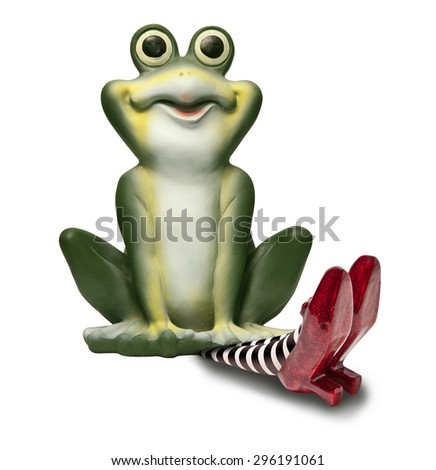 Frog sitting on the wicket witch