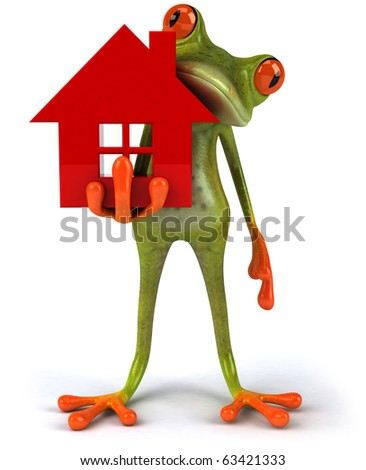 Frog with a house - stock photo
