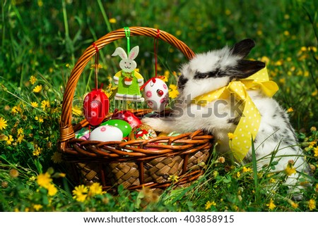 From left on the lawn Easter wicker basket decorated with painted eggs and on right white bunny laid foot in a basket on background of grass and yellow flowers. Easter basket and bunny. Horizontal.  - stock photo