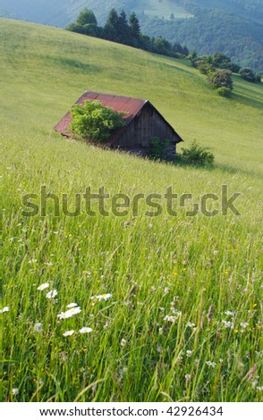 from meadows - stock photo