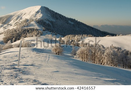 from mountain - stock photo