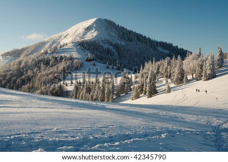 from mountains - stock photo