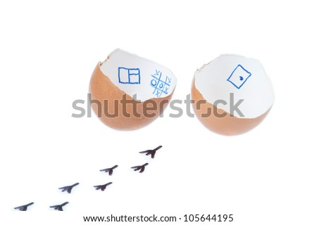 From the egg hatched chick. On a white background. - stock photo