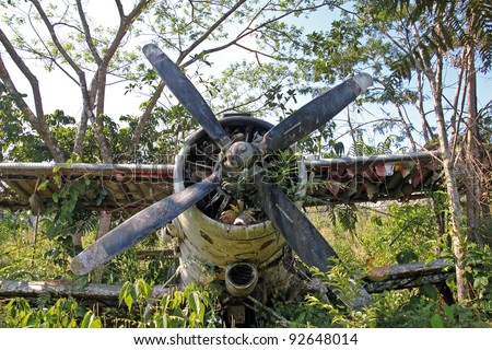 "Front centre view of crashed Russian Antonov An-2 Plane in the Peruvian Amazon. Nicknamed ""Annushka"" or ""Annie"". A single-engine biplane utility/agricultural aircraft designed in the USSR in 1946. - stock photo"