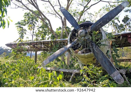 "Front offset view of crashed Russian Antonov An-2 Plane in the Peruvian Amazon. Nicknamed ""Annushka"" or ""Annie"". A single-engine biplane utility/agricultural aircraft designed in the USSR in 1946. - stock photo"