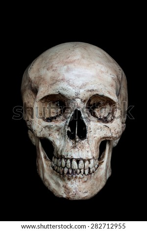 Front side view of human skull on isolated black background - stock photo