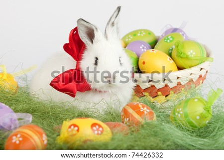 Front view of a white cute rabbit with a red bow on his neck, sitting on grass, surrounded by colorful painted Easter eggs: orange, yellow, green, purple. High resolution image taken in studio.