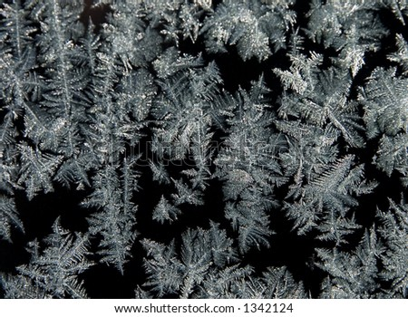 Frost 6 - stock photo