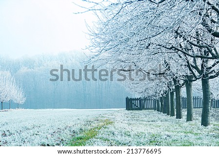 Frost and snow covered landscape - stock photo