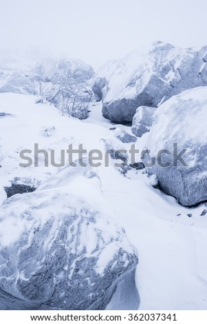 Frost on boulder in the snowy Swedish mountains, upright