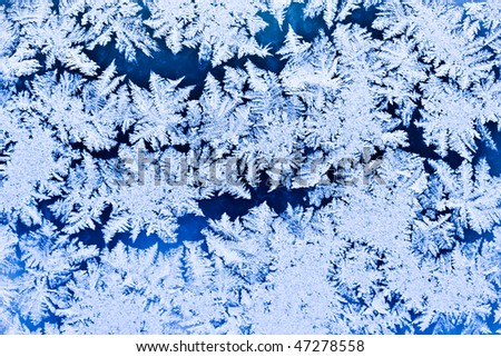 Frost pattern on a winter window - stock photo