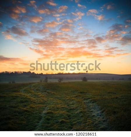 Frosty dawn - stock photo