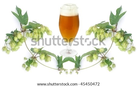 frosty golden beer in glass and hops-plant on white background - stock photo