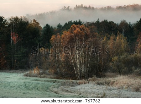 Frosty Morning - stock photo