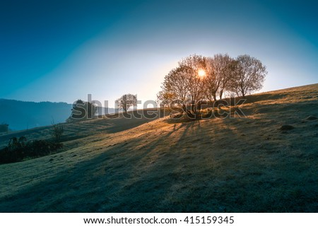 Frosty morning april sunrise at Carpathian mountains. Sunlight through the crones of the trees.  - stock photo