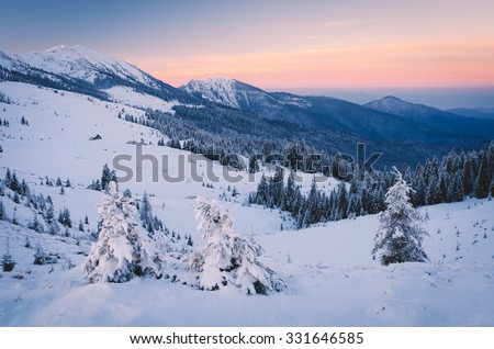 Frosty morning in mountains. Winter landscape. Carpathians, Ukraine, Europe. Low contrast. Color toning