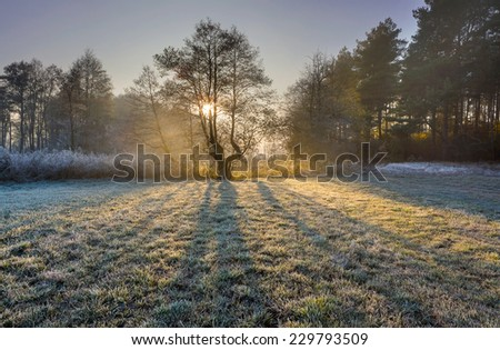 frosty morning landscape - stock photo