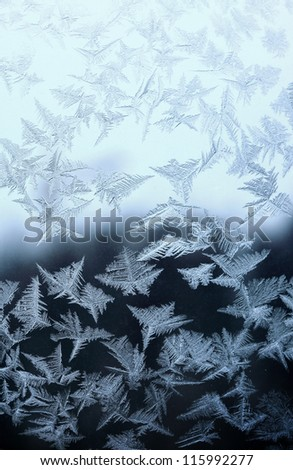 Frosty natural pattern at a winter window glass