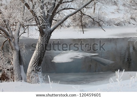 frosty winter's day on the river Zai