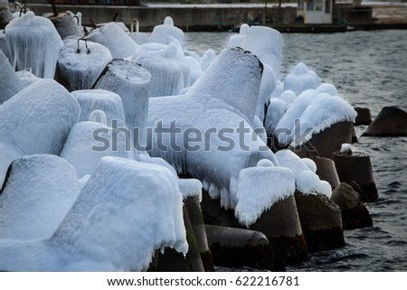 Tetrapod stock images royalty free images vectors for What happens to concrete if it freezes