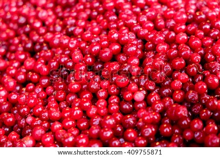 Frozen cranberries, close-up, fruit, background, nutritional supplement - stock photo