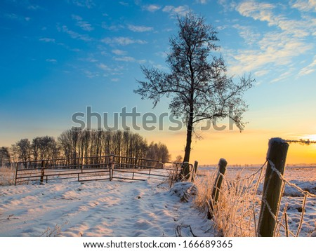 Frozen Fence in Winter Landscape with Snowy Fields and Blue Sky in Drenthe Netherlands - stock photo