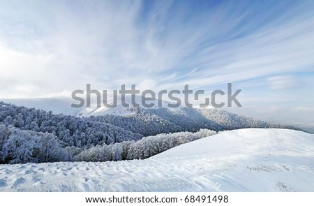 Frozen forest and meadows in Carpathians panorama. Ukraine - stock photo