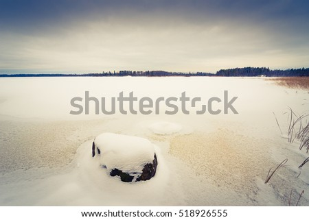 Frozen forest lake with rocks among the winter forest. Image in the yellow-blue toning
