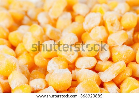 Frozen grains of corn, background. Close up - stock photo