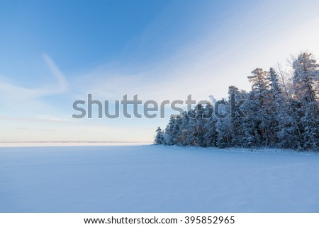 Frozen lake and snow covered forest - stock photo