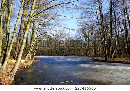 Frozen lake on a cold winter day - stock photo