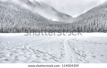 Frozen lake with a sled train in the mountain with trees covered in snow. - stock photo