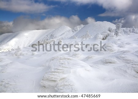 Frozen land - stock photo