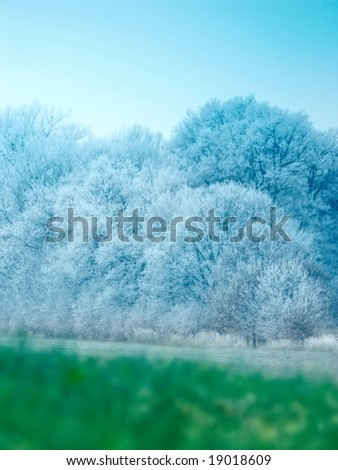 Frozen Landscape - trees in winter wonderland - stock photo