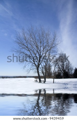 Frozen landscape with lake reflecting tree