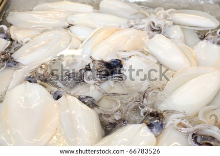 Frozen Raw Baby Squids on iced in supermarket. - stock photo