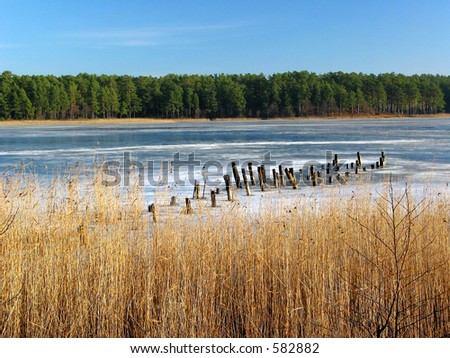 Frozen rushy lake with a an old pier - stock photo