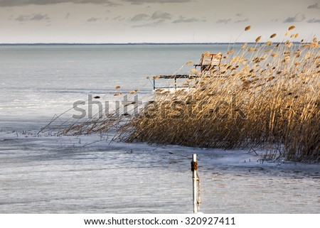 Frozen surface of a lake with some reeds in wind - stock photo