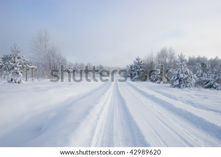 Frozen trees and snowy land road at winter - stock photo
